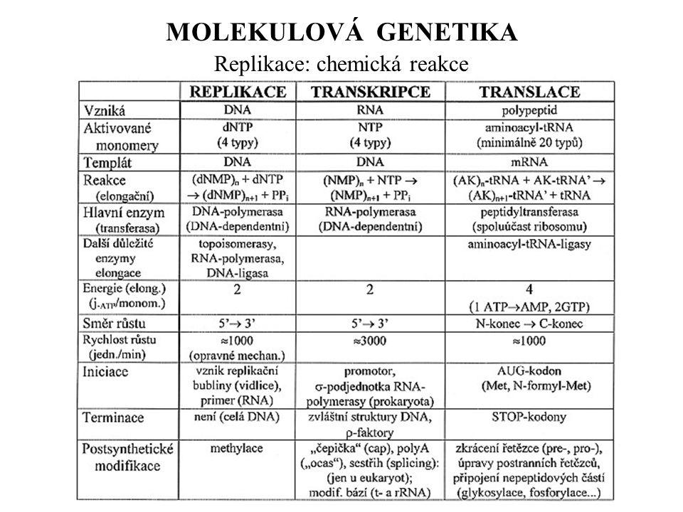 MOLEKULOVÁ GENETIKA Replikace: chemická reakce