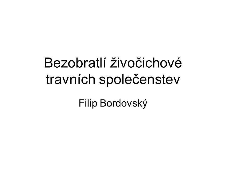 Bezobratlí živočichové travních společenstev Filip Bordovský