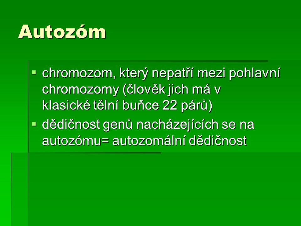 Autozóm  chromozom, který nepatří mezi pohlavní chromozomy (člověk jich má v klasické tělní buňce 22 párů)  dědičnost genů nacházejících se na autoz