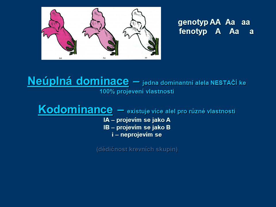 Neúplná dominace – jedna dominantní alela NESTAČÍ ke 100% projevení vlastnosti Kodominance – existuje více alel pro různé vlastnosti IA – projevím se