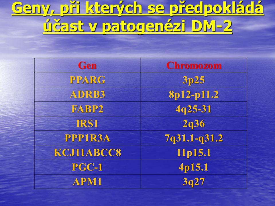 Geny, při kterých se předpokládá účast v patogenézi DM-2 GenChromozom PPARG3p25 ADRB38p12-p11.2 FABP24q25-31 IRS12q36 PPP1R3A7q31.1-q31.2 KCJ11ABCC811