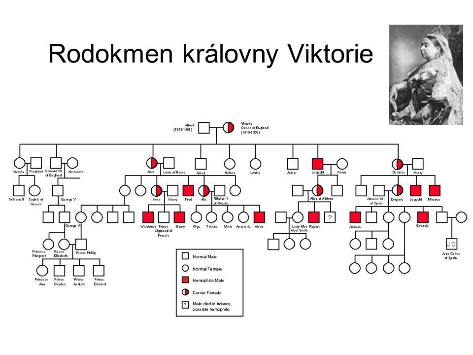 Rodokmen královny Viktorie