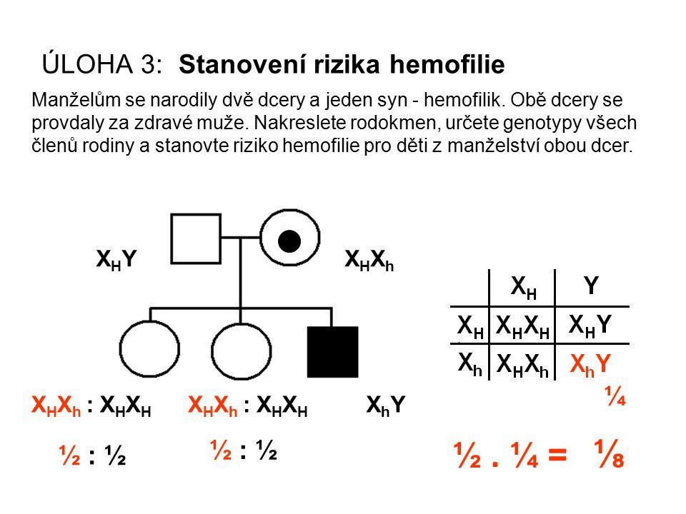 XHYXHYXHXhXHXh X H X h : X H X H XhYXhY ½ : ½ ÚLOHA 3: Stanovení rizika hemofilie Manželům se narodily dvě dcery a jeden syn - hemofilik. Obě dcery se