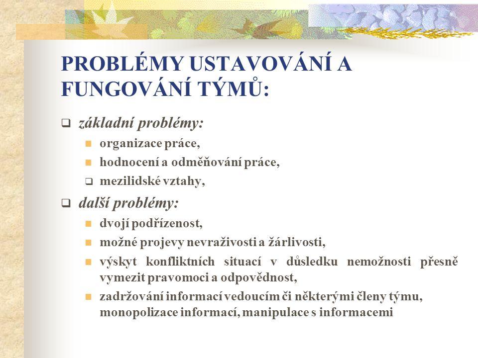 PROBLÉMY USTAVOVÁNÍ A FUNGOVÁNÍ TÝMŮ:  základní problémy: organizace práce, hodnocení a odměňování práce,  mezilidské vztahy,  další problémy: dvoj