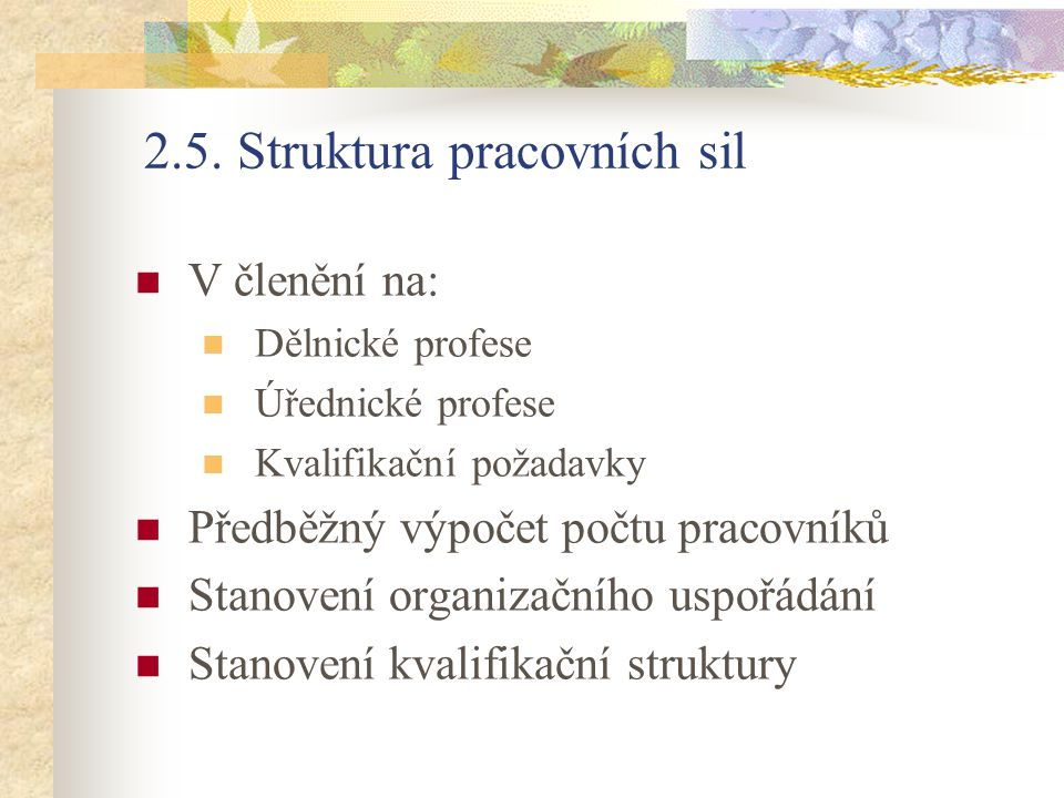 2.5. Struktura pracovních sil V členění na: Dělnické profese Úřednické profese Kvalifikační požadavky Předběžný výpočet počtu pracovníků Stanovení org