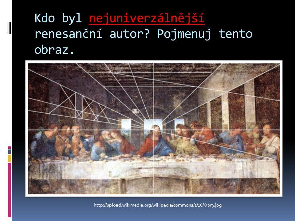 Kdo byl nejuniverzálnější renesanční autor. Pojmenuj tento obraz.