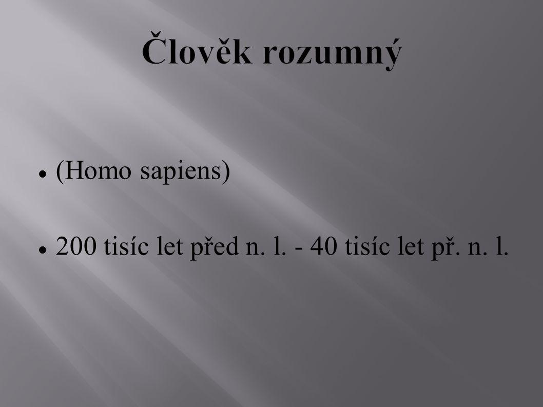 (Homo sapiens) 200 tisíc let před n. l. - 40 tisíc let př. n. l.
