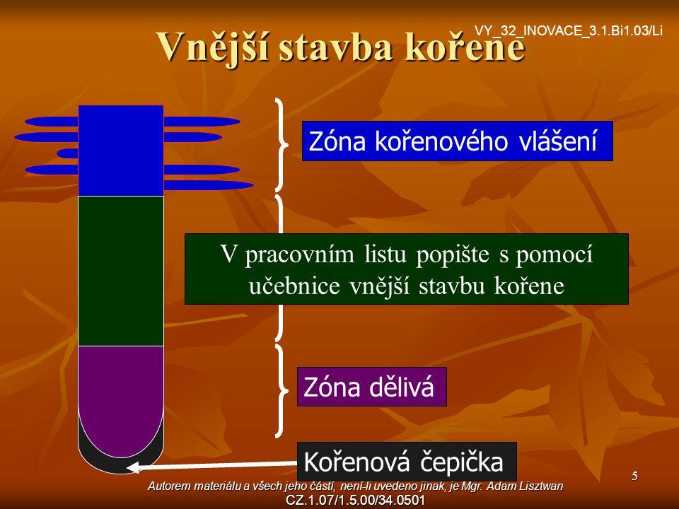 Autorem materiálu a všech jeho částí, není-li uvedeno jinak, je Mgr. Adam Lisztwan CZ.1.07/1.5.00/34.0501 5 Vnější stavba kořene Zóna kořenového vláše