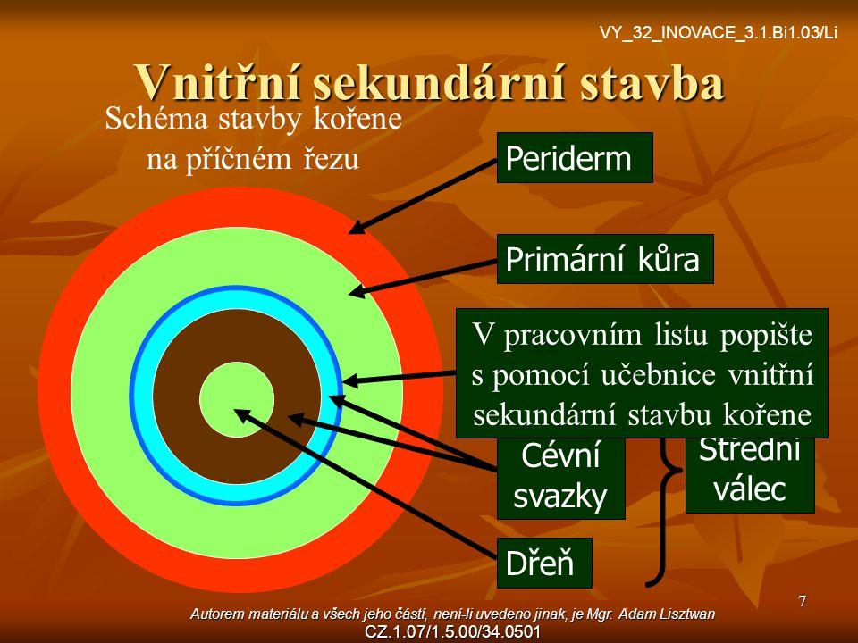 Autorem materiálu a všech jeho částí, není-li uvedeno jinak, je Mgr. Adam Lisztwan CZ.1.07/1.5.00/34.0501 7 Vnitřní sekundární stavba Periderm Primárn