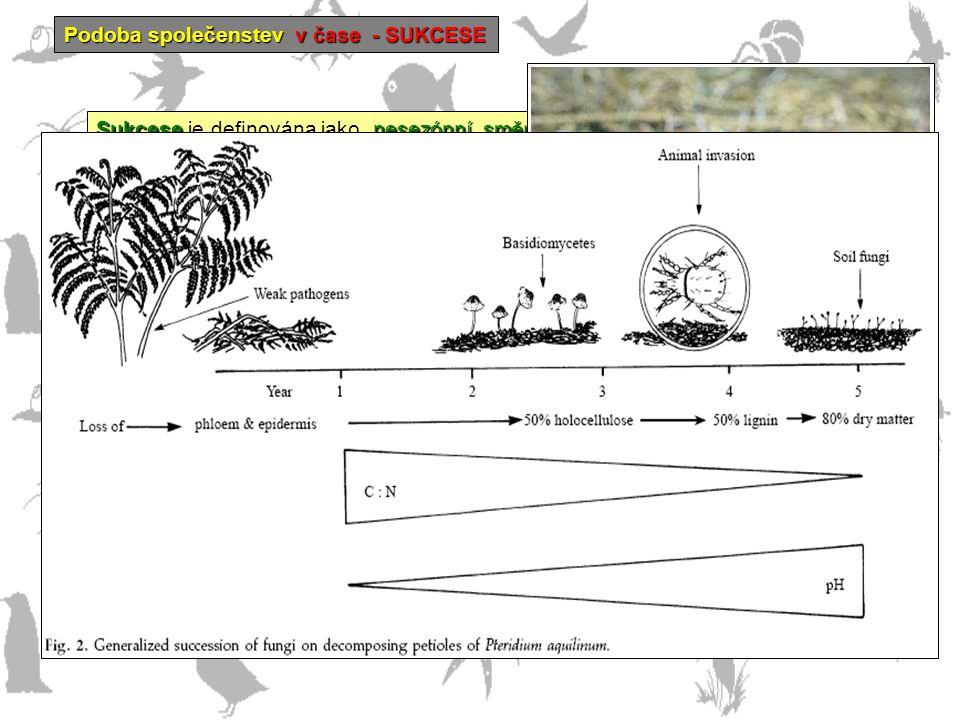 Podoba společenstev v čase - SUKCESE Sukcese nesezónní, směrovaný a kontinuální proces kolonizace a zániku populací jednotlivých druhů na určitém míst