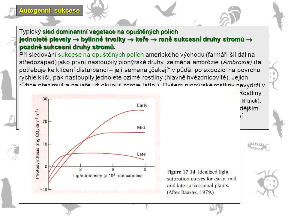 Autogenní sukcese sled dominantní vegetace na opuštěných polích Typický sled dominantní vegetace na opuštěných polích jednoleté plevely  bylinné trva