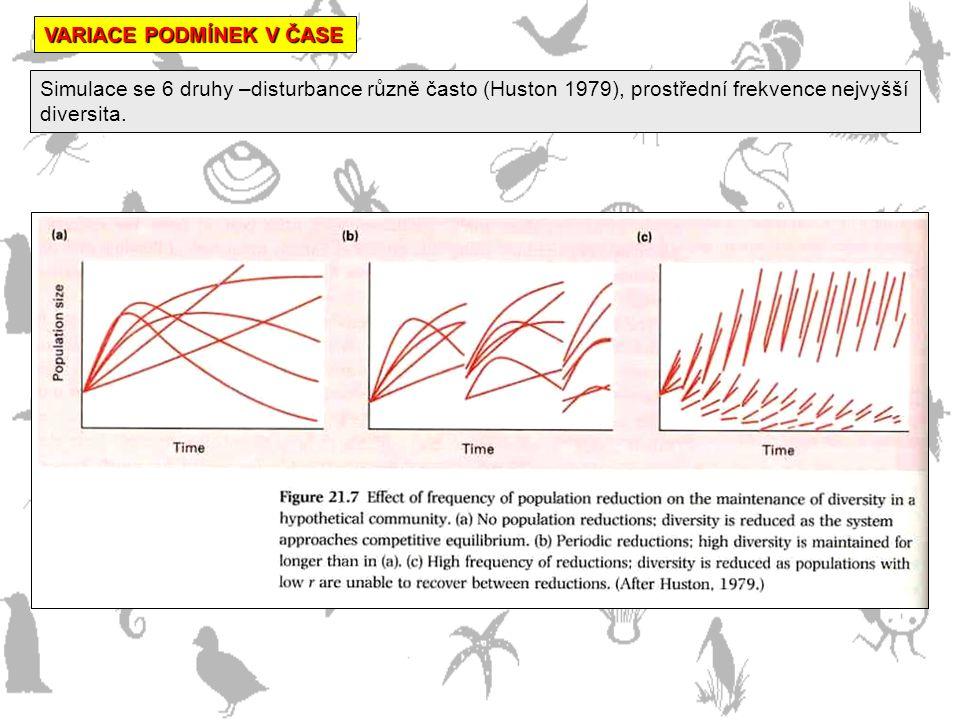 VARIACE PODMÍNEK V ČASE Simulace se 6 druhy –disturbance různě často (Huston 1979), prostřední frekvence nejvyšší diversita.