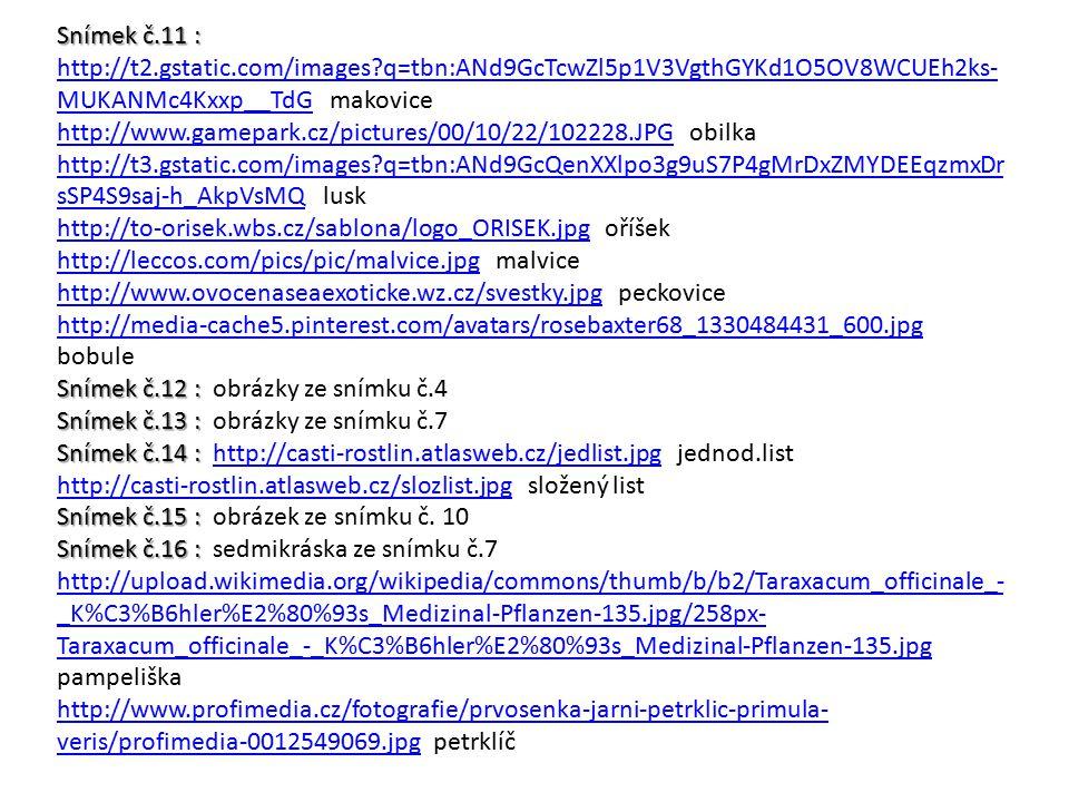 Snímek č.11 : Snímek č.11 : http://t2.gstatic.com/images?q=tbn:ANd9GcTcwZl5p1V3VgthGYKd1O5OV8WCUEh2ks- MUKANMc4Kxxp__TdG makovice http://t2.gstatic.co