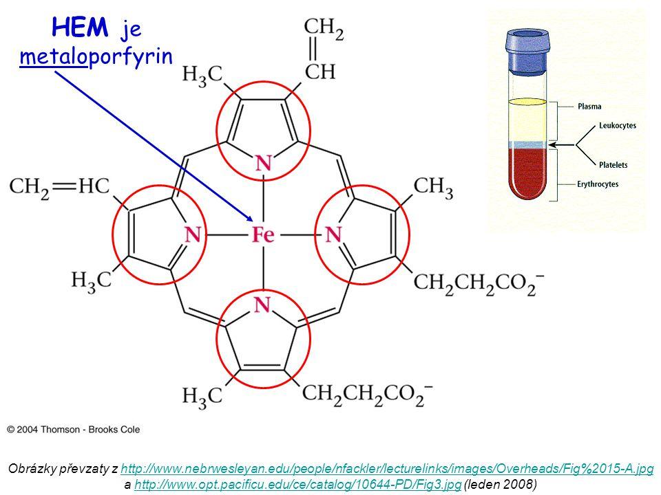 Syntéza hemu - REGULACE ALA-syntáza  klíčový regulační enzym synt.