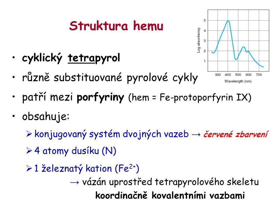 Struktura hemu cyklický tetrapyrol různě substituované pyrolové cykly patří mezi porfyriny (hem = Fe-protoporfyrin IX) obsahuje:  konjugovaný systém dvojných vazeb → červené zbarvení  4 atomy dusíku (N)  1 železnatý kation (Fe 2+ ) → vázán uprostřed tetrapyrolového skeletu koordinačně kovalentními vazbami