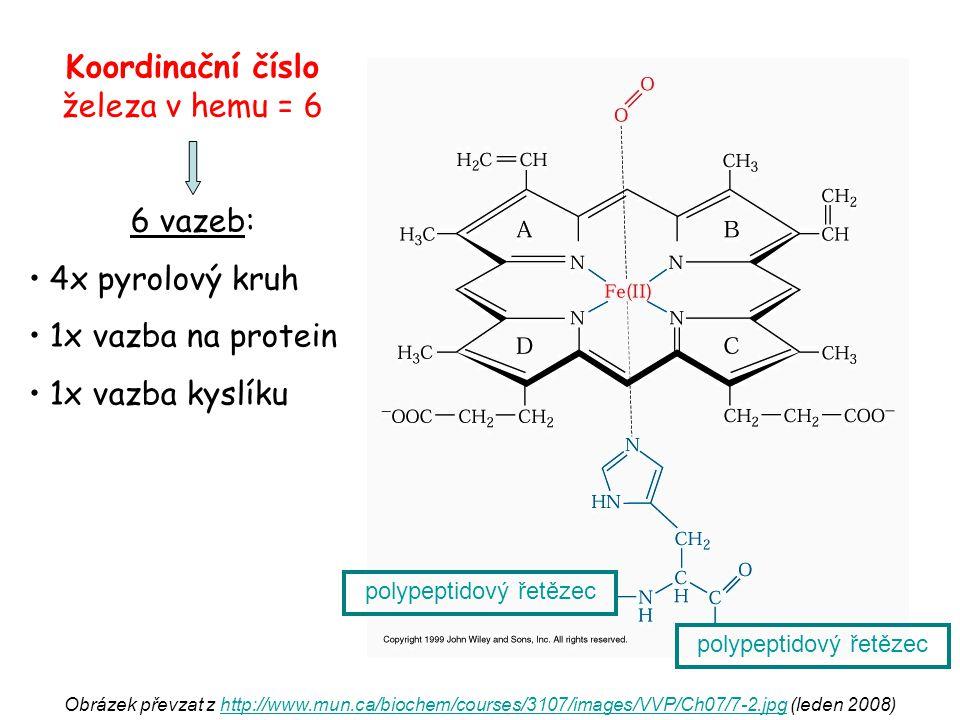 Syntéza hemu hlavně v kostní dřeni (Hb) a játrech (cytochromy) mitochondrie / cytoplazma / mitochondrie substráty: sukcinyl-CoA + glycin významné meziprodukty:  kys.