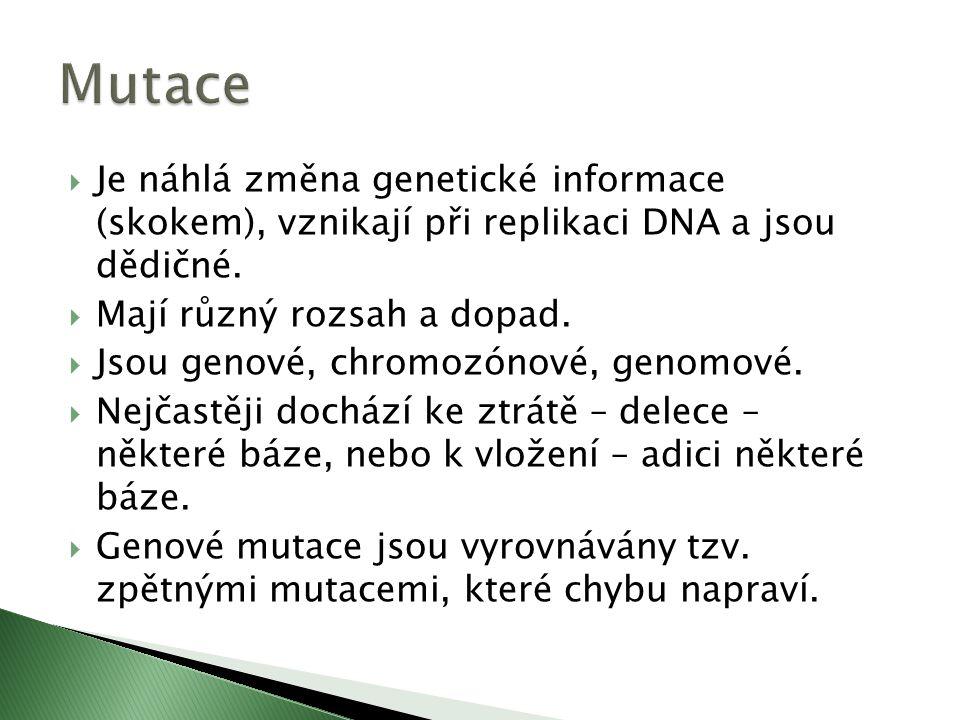  Je náhlá změna genetické informace (skokem), vznikají při replikaci DNA a jsou dědičné.