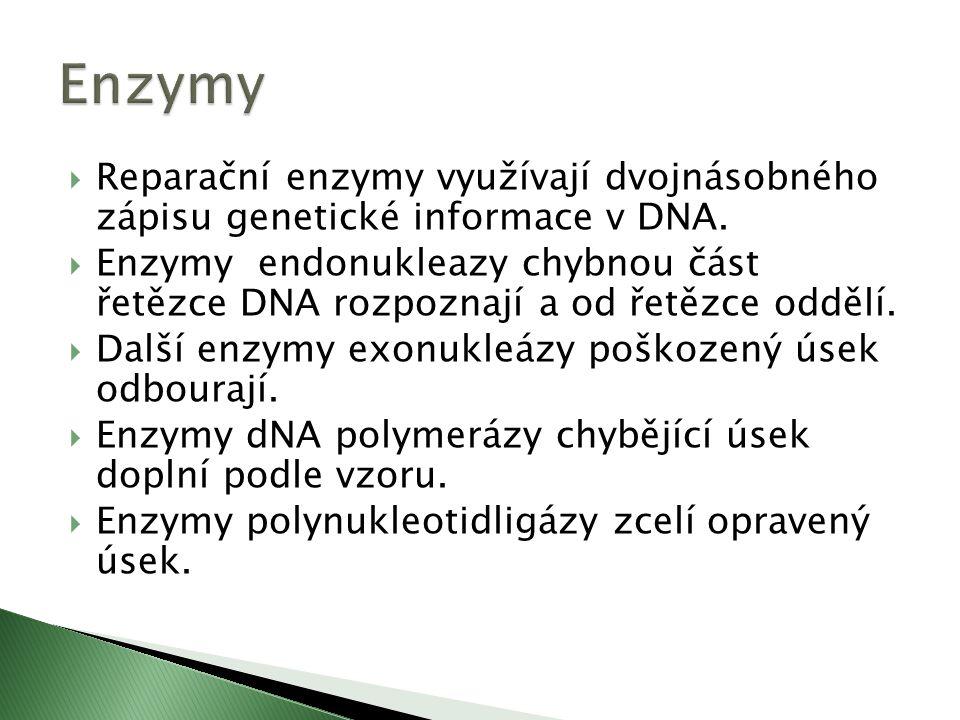  Mutace gametické postihují celý organismus.