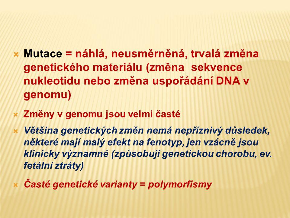 """Mutace x polymorfismy změny v primární struktuře DNA Mnoho genů má pouze jednu normální verzi = """"wild type alela Jiné geny vykazují polymorfismus (mnoho forem) v populaci Normální varianty (alely) jsou v populaci časté Variantní alely s frekvencí větší než 1% = polymorfismus (tato definice neříká nic o důsledku varianty na fenotyp – většina častých variant (polymorfismů) nemá nepříznivý efekt na lidské zdraví, některé však modifikují riziko běžných chorob, jako např."""