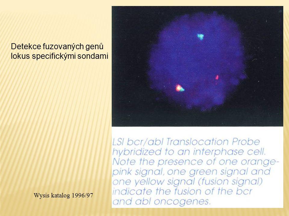 Detekce fuzovaných genů lokus specifickými sondami Wysis katalog 1996/97