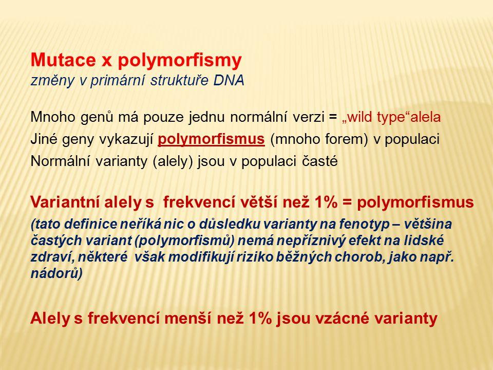 """Mutace x polymorfismy změny v primární struktuře DNA Mnoho genů má pouze jednu normální verzi = """"wild type""""alela Jiné geny vykazují polymorfismus (mno"""