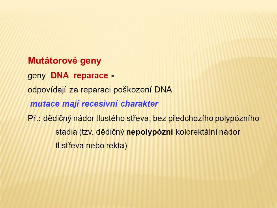 Mutátorové geny geny DNA reparace - odpovídají za reparaci poškození DNA mutace mají recesivní charakter Př.: dědičný nádor tlustého střeva, bez předc