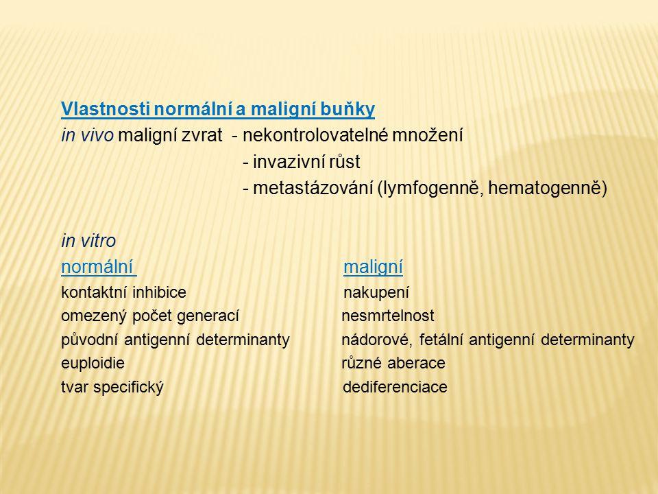 Vlastnosti normální a maligní buňky in vivo maligní zvrat - nekontrolovatelné množení - invazivní růst - metastázování (lymfogenně, hematogenně) in vi