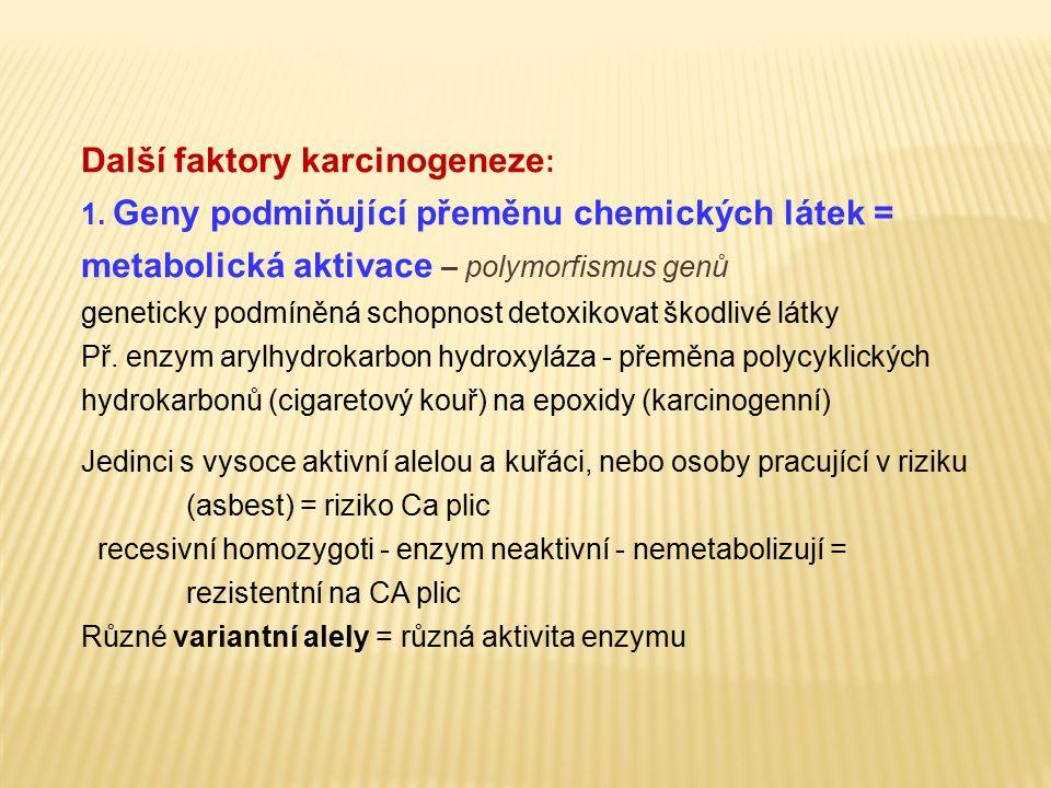 Další faktory karcinogeneze : 1. Geny podmiňující přeměnu chemických látek = metabolická aktivace – polymorfismus genů geneticky podmíněná schopnost d