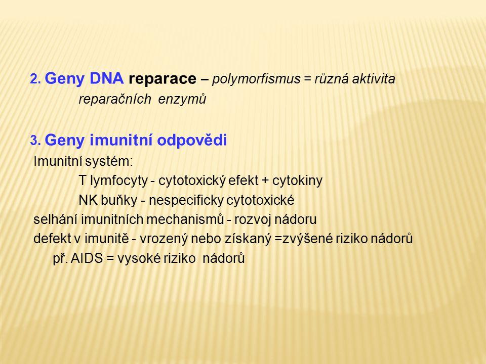 2. Geny DNA reparace – polymorfismus = různá aktivita reparačních enzymů 3. Geny imunitní odpovědi Imunitní systém: T lymfocyty - cytotoxický efekt +