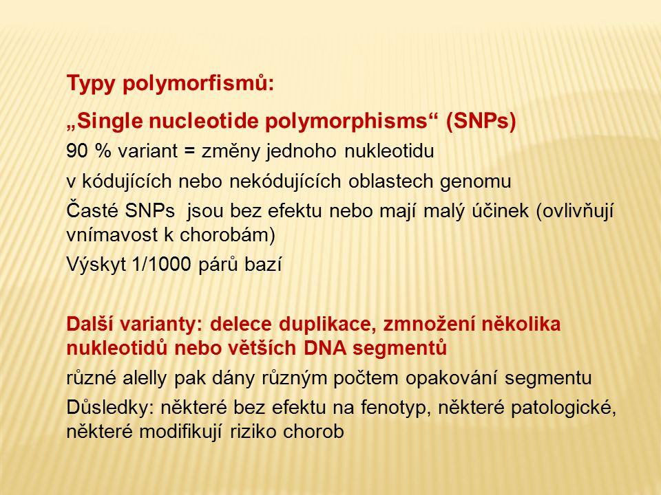 """Typy polymorfismů: """" Single nucleotide polymorphisms"""" (SNPs) 90 % variant = změny jednoho nukleotidu v kódujících nebo nekódujících oblastech genomu Č"""