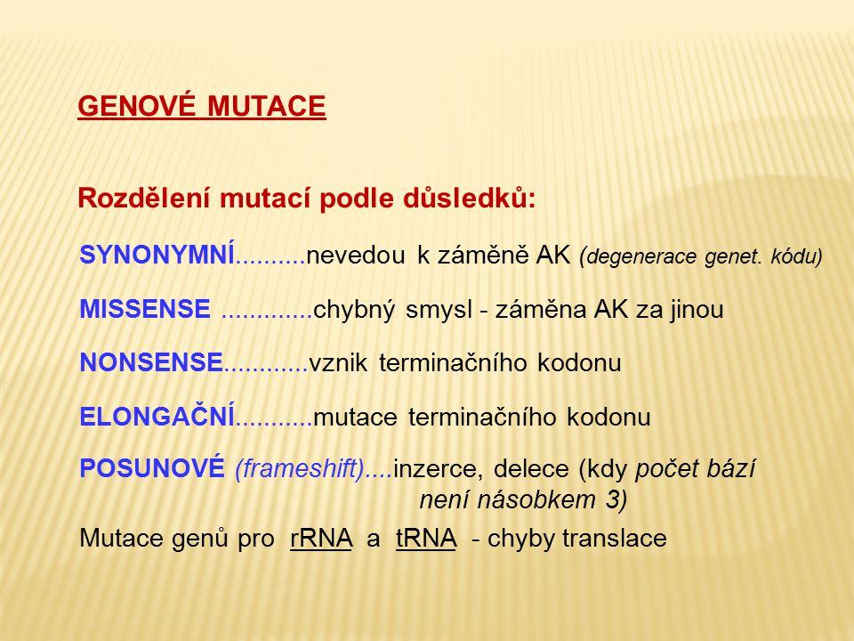 Rozdělení podle mechanismu vzniku: SUBSTITUCE nukleotidu = záměna báze (tranzice=záměna purinu za purin, pyrimidinu za pyrimidin, transverze=purin za pyrimidin nebo pyrimidin za purin) = bodová mutace: př.