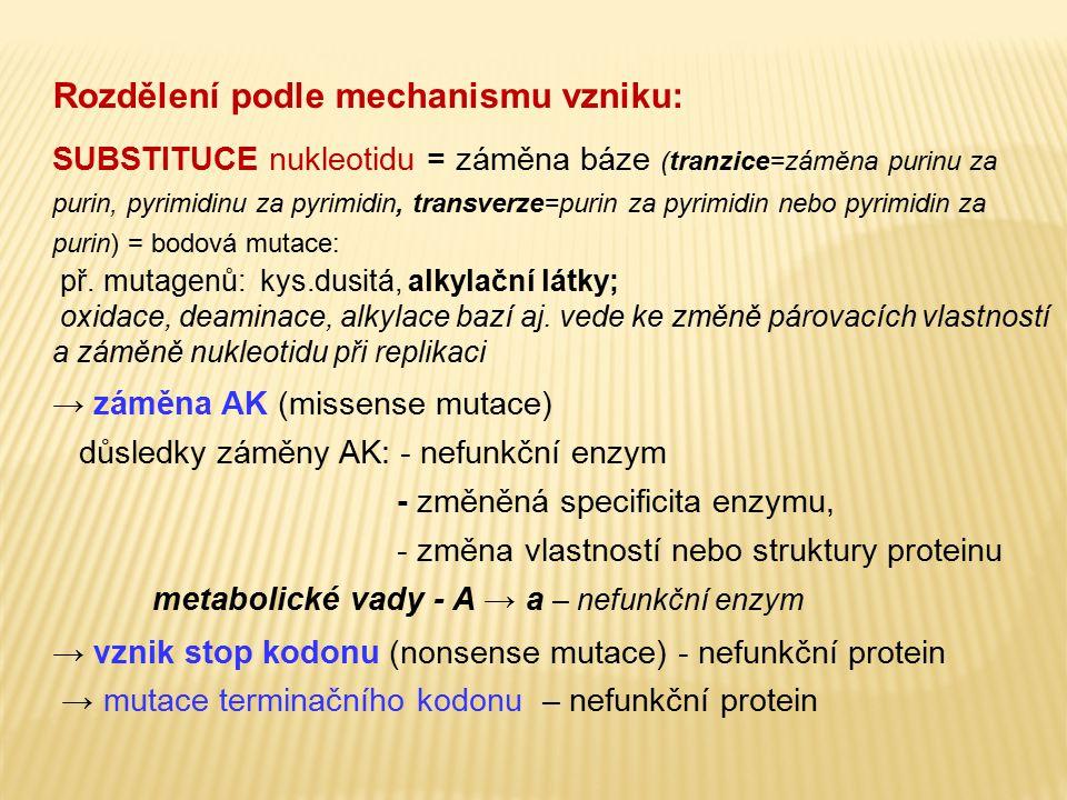 Rozdělení podle mechanismu vzniku: SUBSTITUCE nukleotidu = záměna báze (tranzice=záměna purinu za purin, pyrimidinu za pyrimidin, transverze=purin za