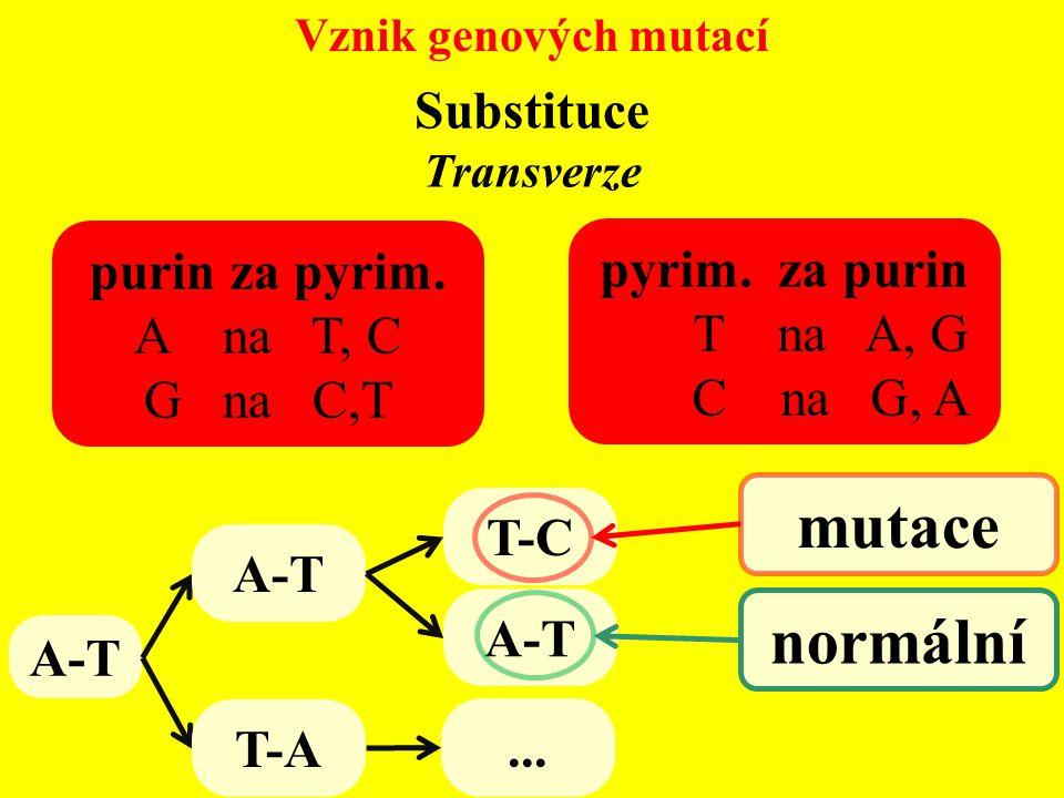 Vznik genových mutací Transverze purin za pyrim. A na T, C G na C,T pyrim. za purin T na A, G C na G, A A-T T-C A-T mutace normální A-T T-A... Substit