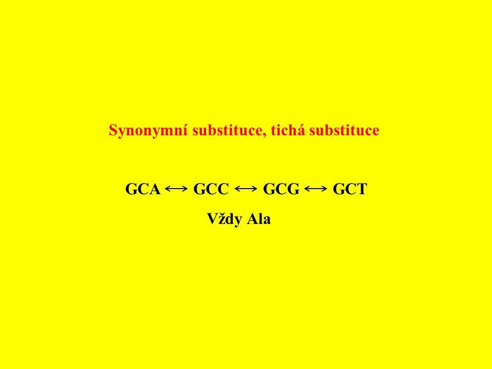 Synonymní substituce, tichá substituce GCA GCC GCG GCT Vždy Ala