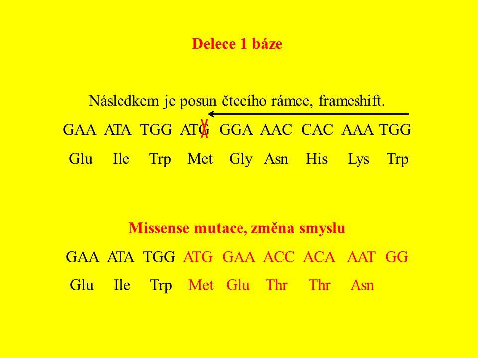 Delece 1 báze Následkem je posun čtecího rámce, frameshift. GAA ATA TGG ATG GGA AAC CAC AAA TGG Glu Ile Trp Met Gly Asn His Lys Trp Missense mutace, z
