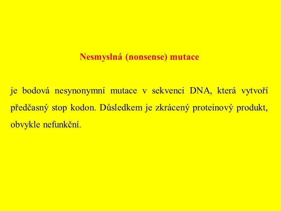 Nesmyslná (nonsense) mutace je bodová nesynonymní mutace v sekvenci DNA, která vytvoří předčasný stop kodon. Důsledkem je zkrácený proteinový produkt,