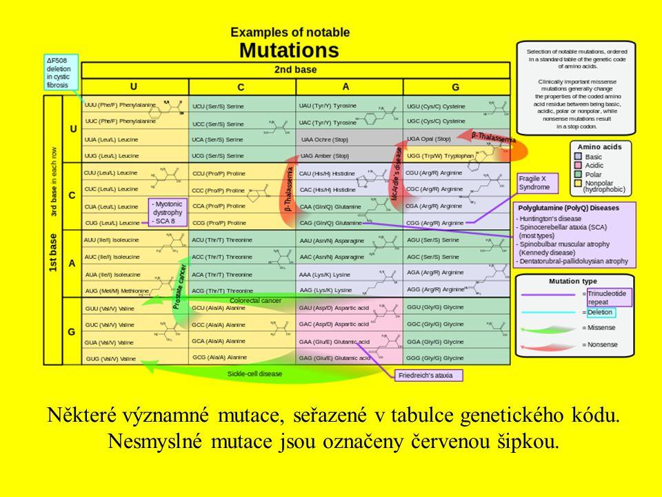Některé významné mutace, seřazené v tabulce genetického kódu. Nesmyslné mutace jsou označeny červenou šipkou.