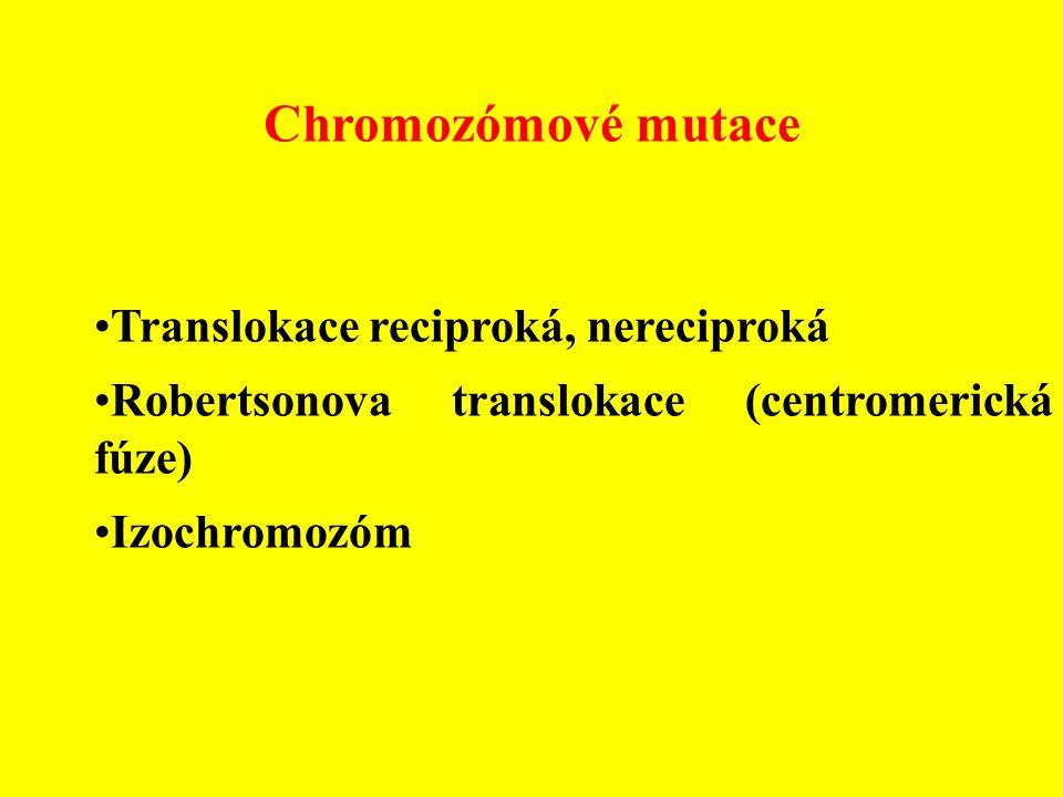 Chromozómové mutace Translokace reciproká, nereciproká Robertsonova translokace (centromerická fúze) Izochromozóm