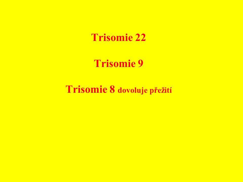 Trisomie 22 Trisomie 9 Trisomie 8 dovoluje přežití