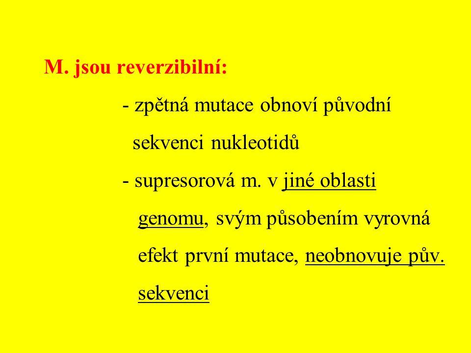Polyploidie - násobky celé sady chromozomů Aneuploidie - změna počtu jednotlivých chromozomů - vznikají poruchou meiózy nebo mitózy (nondisjunkcí, anafází lag)