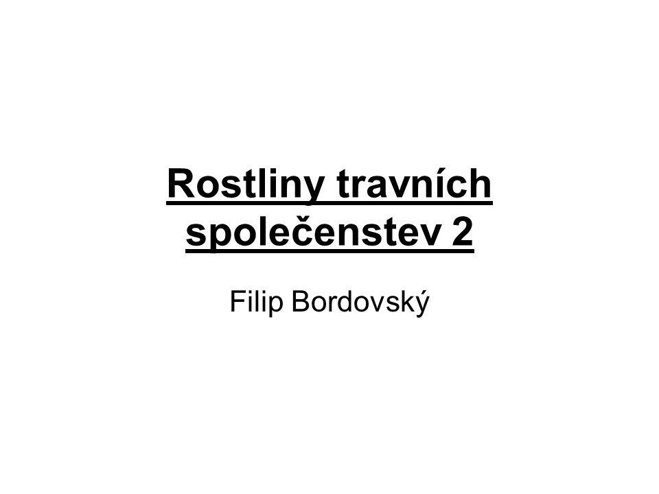 Rostliny travních společenstev 2 Filip Bordovský