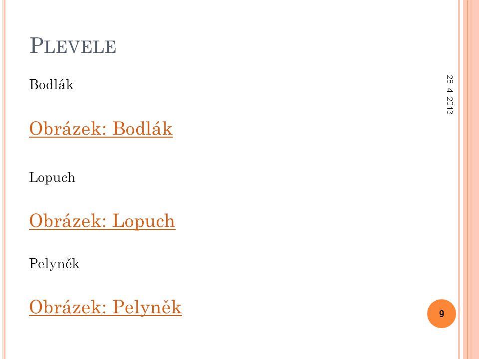 P LEVELE Bodlák Obrázek: Bodlák Lopuch Obrázek: Lopuch Pelyněk Obrázek: Pelyněk 28. 4. 2013 9