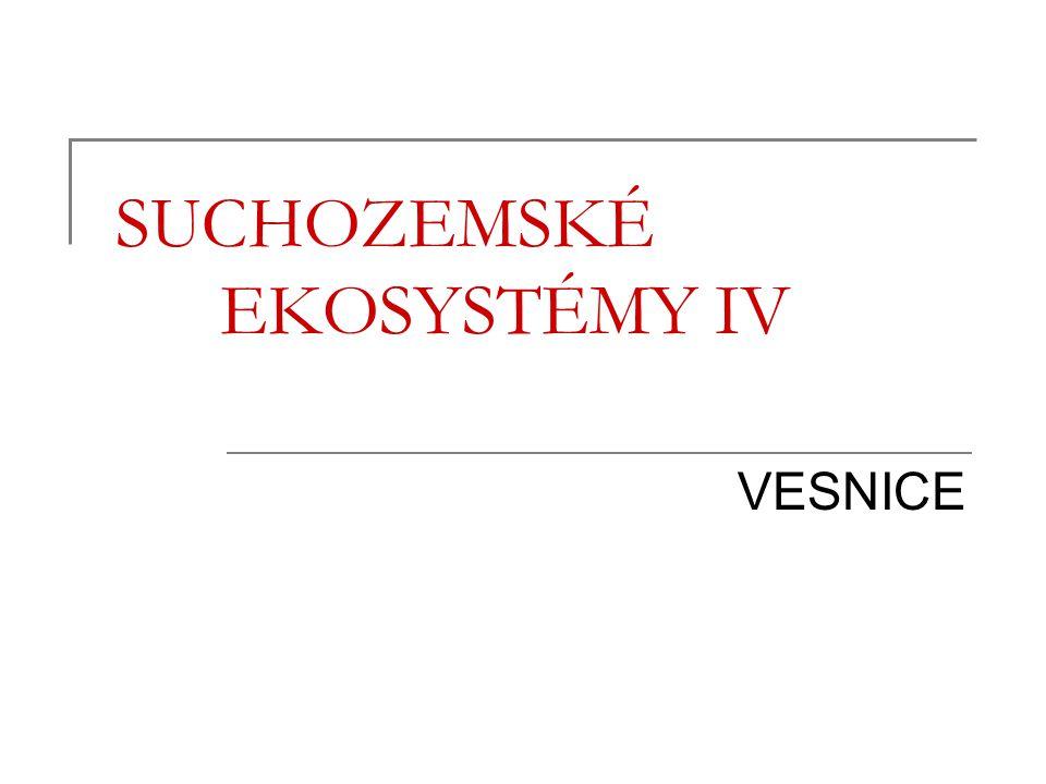 Osnova Charakteristika Vymezení venkovských sídel Vznik a vývoj venkovských sídel v ČR Flóra a fauna vesnic Vesnice a Brno