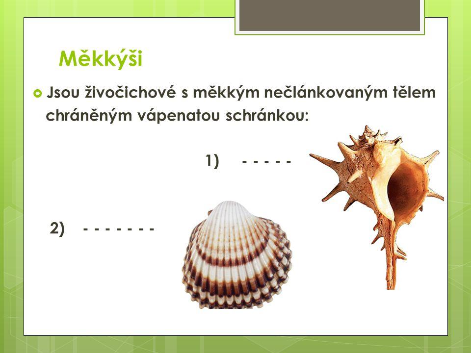 Měkkýši  Jsou živočichové s měkkým nečlánkovaným tělem chráněným vápenatou schránkou: 1) ulita 2) lastura