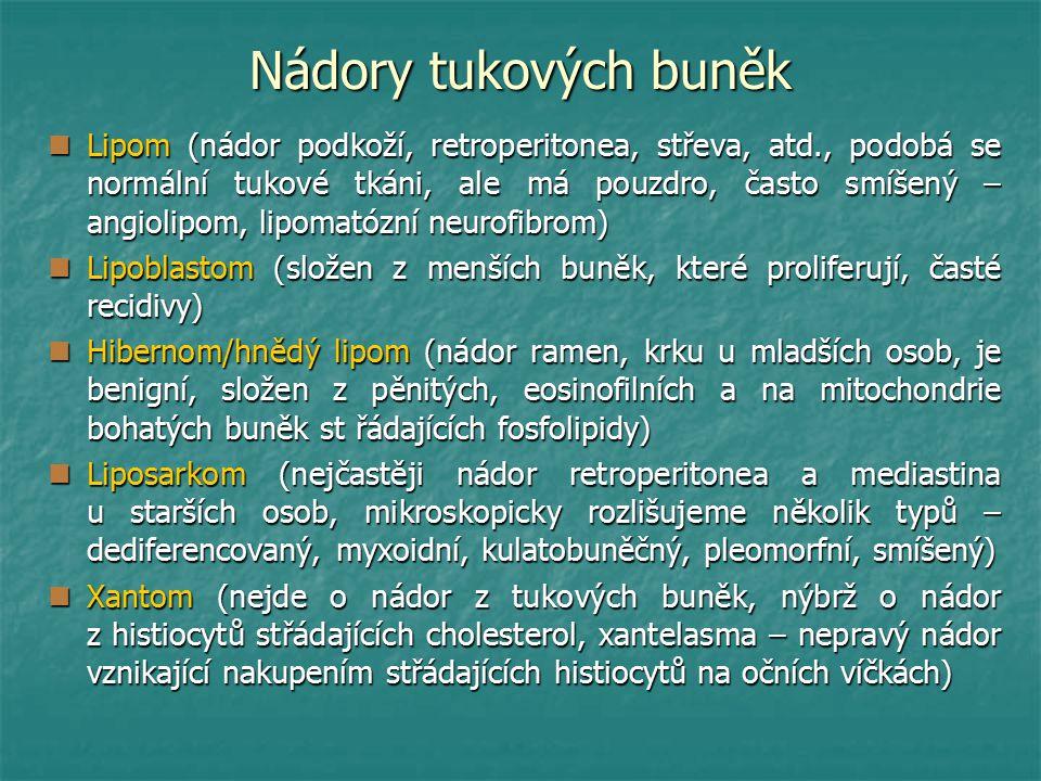 Nádory tukových buněk Lipom (nádor podkoží, retroperitonea, střeva, atd., podobá se normální tukové tkáni, ale má pouzdro, často smíšený – angiolipom, lipomatózní neurofibrom) Lipom (nádor podkoží, retroperitonea, střeva, atd., podobá se normální tukové tkáni, ale má pouzdro, často smíšený – angiolipom, lipomatózní neurofibrom) Lipoblastom (složen z menších buněk, které proliferují, časté recidivy) Lipoblastom (složen z menších buněk, které proliferují, časté recidivy) Hibernom/hnědý lipom (nádor ramen, krku u mladších osob, je benigní, složen z pěnitých, eosinofilních a na mitochondrie bohatých buněk st řádajících fosfolipidy) Hibernom/hnědý lipom (nádor ramen, krku u mladších osob, je benigní, složen z pěnitých, eosinofilních a na mitochondrie bohatých buněk st řádajících fosfolipidy) Liposarkom (nejčastěji nádor retroperitonea a mediastina u starších osob, mikroskopicky rozlišujeme několik typů – dediferencovaný, myxoidní, kulatobuněčný, pleomorfní, smíšený) Liposarkom (nejčastěji nádor retroperitonea a mediastina u starších osob, mikroskopicky rozlišujeme několik typů – dediferencovaný, myxoidní, kulatobuněčný, pleomorfní, smíšený) Xantom (nejde o nádor z tukových buněk, nýbrž o nádor z histiocytů střádajících cholesterol, xantelasma – nepravý nádor vznikající nakupením střádajících histiocytů na očních víčkách) Xantom (nejde o nádor z tukových buněk, nýbrž o nádor z histiocytů střádajících cholesterol, xantelasma – nepravý nádor vznikající nakupením střádajících histiocytů na očních víčkách)