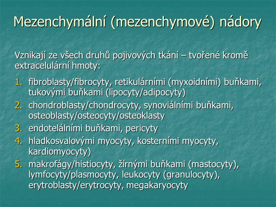 Mezenchymální (mezenchymové) nádory 1.fibroblasty/fibrocyty, retikulárními (myxoidními) buňkami, tukovými buňkami (lipocyty/adipocyty) 2.chondroblasty/chondrocyty, synoviálními buňkami, osteoblasty/osteocyty/osteoklasty 3.endotelálními buňkami, pericyty 4.hladkosvalovými myocyty, kosterními myocyty, kardiomyocyty) 5.makrofágy/histiocyty, žírnými buňkami (mastocyty), lymfocyty/plasmocyty, leukocyty (granulocyty), erytroblasty/erytrocyty, megakaryocyty Vznikají ze všech druhů pojivových tkání – tvořené kromě extracelulární hmoty:
