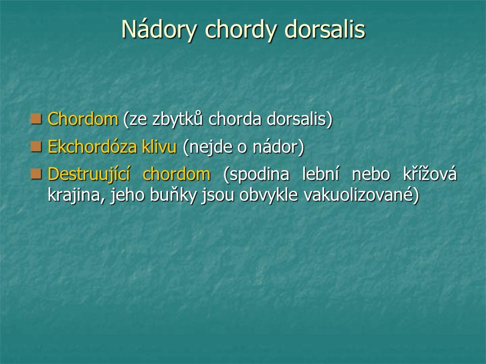Nádory chordy dorsalis Chordom (ze zbytků chorda dorsalis) Chordom (ze zbytků chorda dorsalis) Ekchordóza klivu (nejde o nádor) Ekchordóza klivu (nejde o nádor) Destruující chordom (spodina lební nebo křížová krajina, jeho buňky jsou obvykle vakuolizované) Destruující chordom (spodina lební nebo křížová krajina, jeho buňky jsou obvykle vakuolizované)
