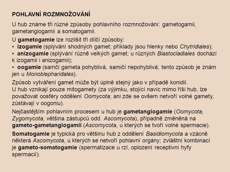 POHLAVNÍ ROZMNOŽOVÁNÍ U hub známe tři různé způsoby pohlavního rozmnožování: gametogamii, gametangiogamii a somatogamii.