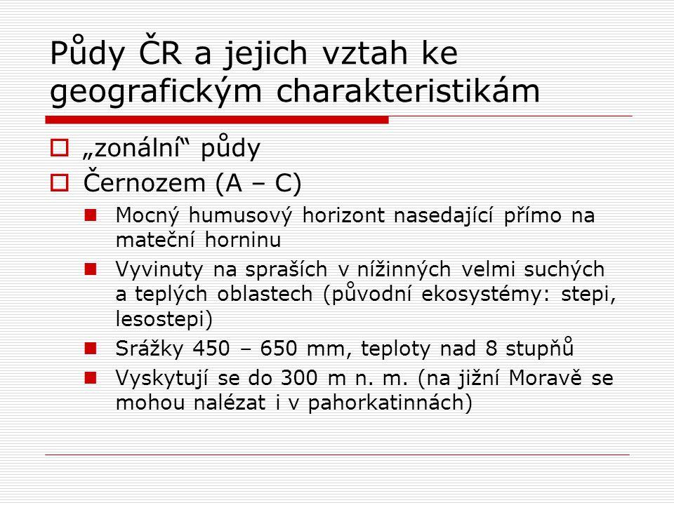 """Půdy ČR a jejich vztah ke geografickým charakteristikám  """"zonální půdy  Černozem (A – C) Mocný humusový horizont nasedající přímo na mateční horninu Vyvinuty na spraších v nížinných velmi suchých a teplých oblastech (původní ekosystémy: stepi, lesostepi) Srážky 450 – 650 mm, teploty nad 8 stupňů Vyskytují se do 300 m n."""