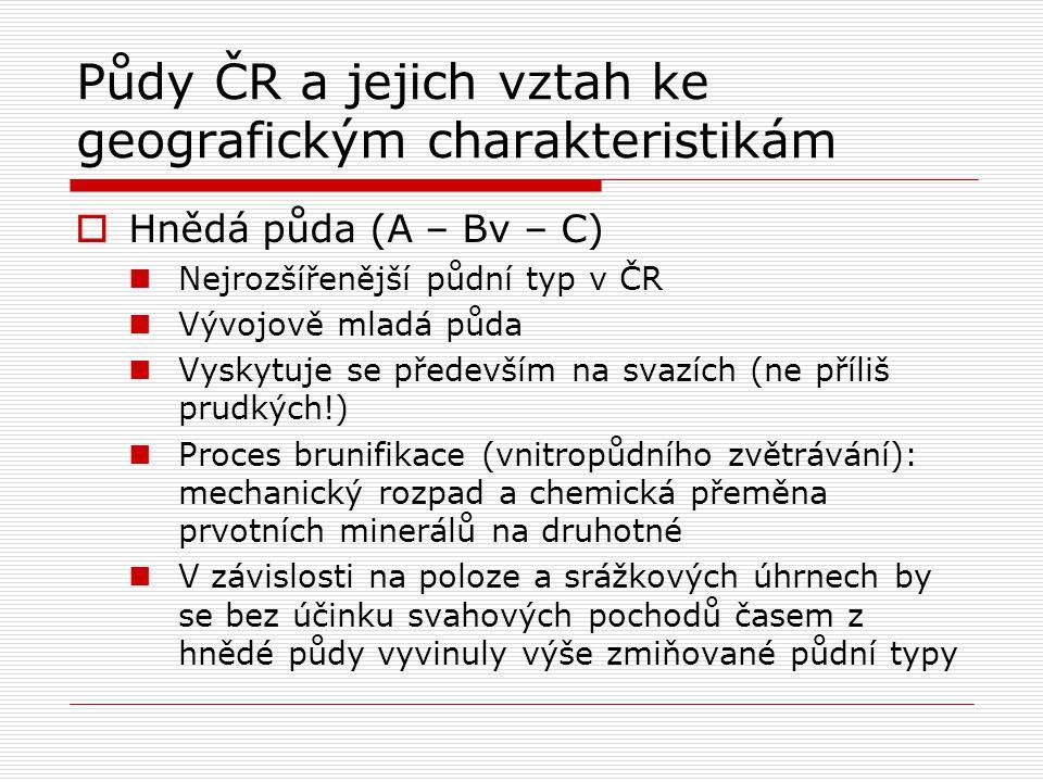 Půdy ČR a jejich vztah ke geografickým charakteristikám  Hnědá půda (A – Bv – C) Nejrozšířenější půdní typ v ČR Vývojově mladá půda Vyskytuje se před